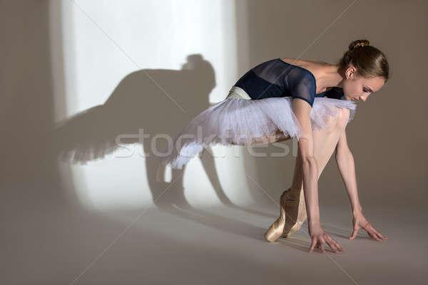 Pełny wzrostu portret wdzięczny baleriny studio Zdjęcia stock © bezikus