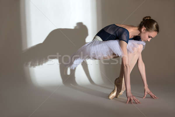 Plein croissance portrait gracieux ballerine studio Photo stock © bezikus
