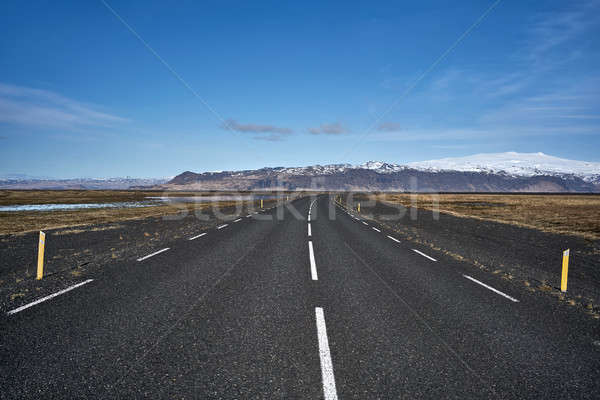 Icelandic landscape with country roadway Stock photo © bezikus