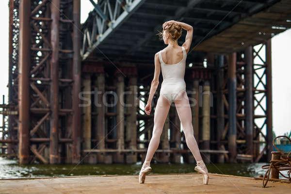 Bale paslı ince balerin ayakta Stok fotoğraf © bezikus