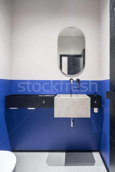 Toaleta ściany konkretnych umywalka elegancki biuro Zdjęcia stock © bezikus