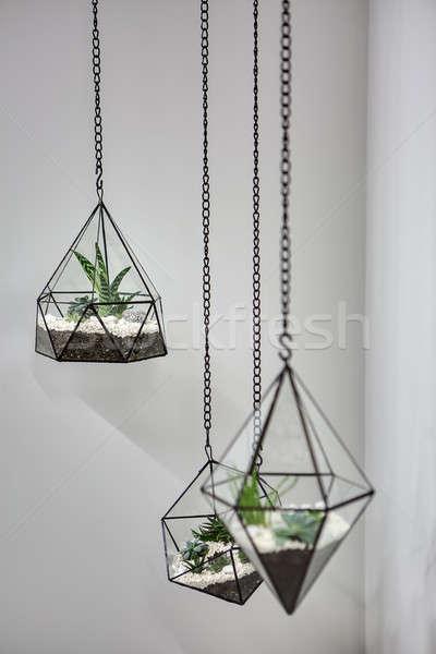 Hanging vases with plants Stock photo © bezikus