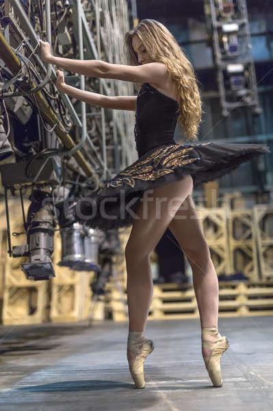 Ballerina pózol belső káprázatos nagy színpad Stock fotó © bezikus