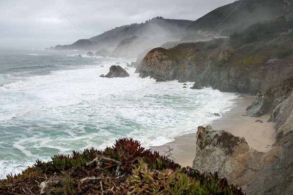 Praia San Francisco espetacular paisagem nebuloso Foto stock © bezikus