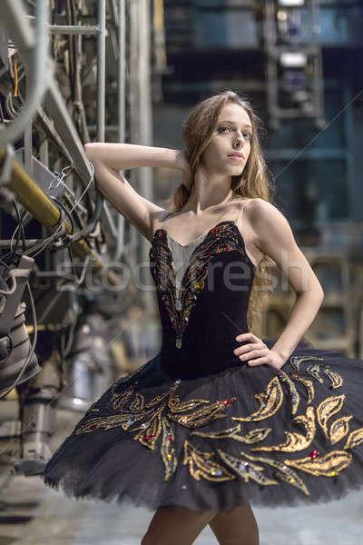 Ballerina pózol belső szexi nagy színpad Stock fotó © bezikus