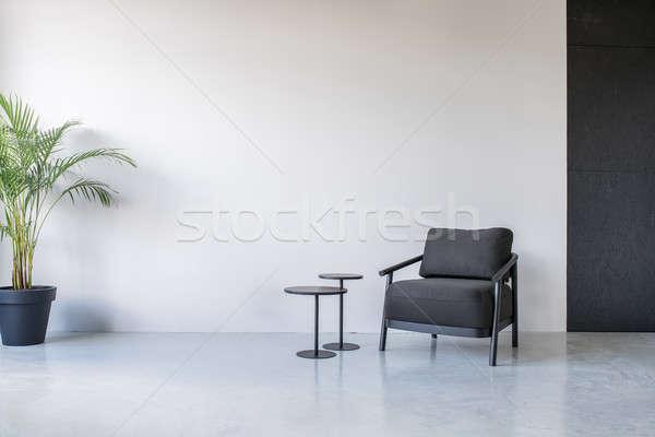 Stijlvol interieur grijs zwarte muren donkere Stockfoto © bezikus