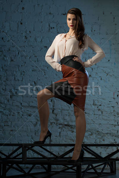 Portrait glamorous brown-haired business style girl Stock photo © bezikus