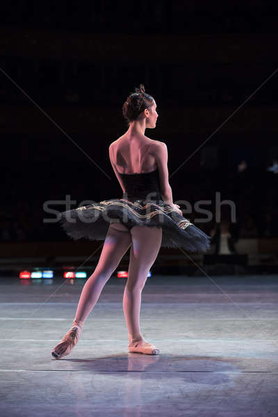 Ballerina dancing prova fase prestazioni Swan Foto d'archivio © bezikus