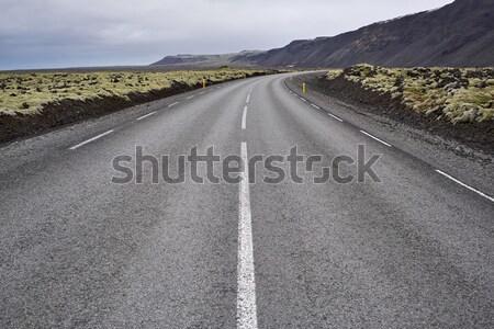 Icelandic landscape with country roadway Stock photo © bezikus