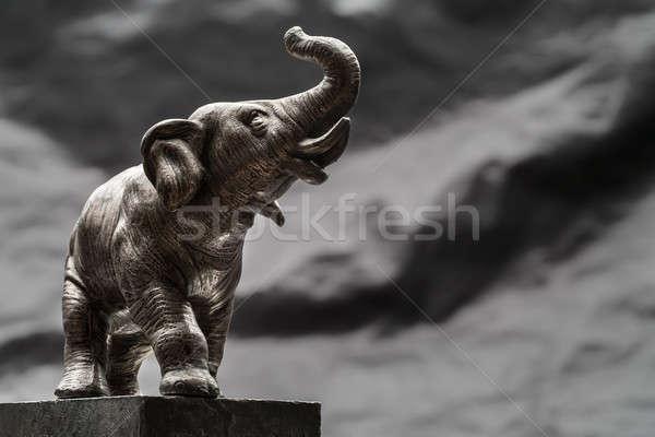 elephant Stock photo © bezikus