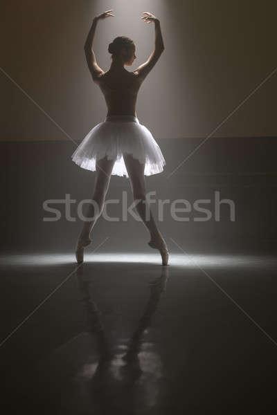 Balett-táncos mögött aranyos ballerina áll lábujjak Stock fotó © bezikus