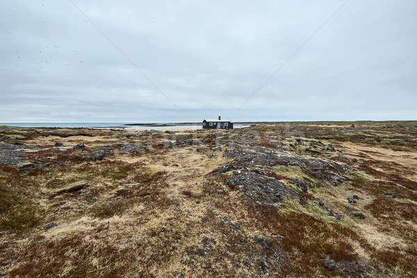 Landschap eenzaam huis donkere veld gedekt Stockfoto © bezikus