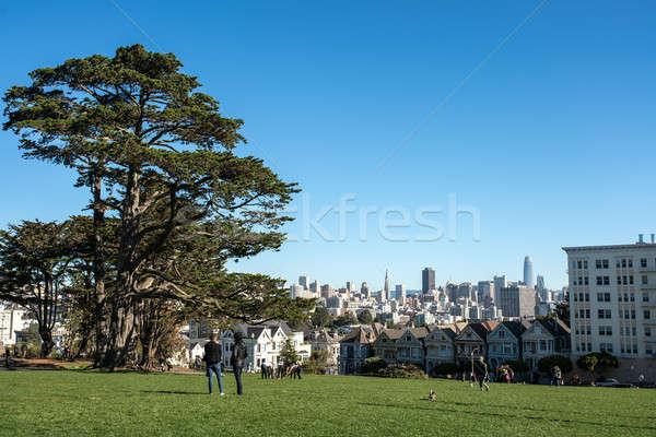 Belo cityscape San Francisco parque grama verde grande Foto stock © bezikus