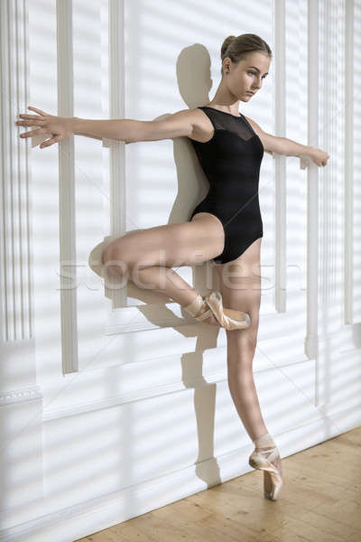 Stockfoto: Ballerina · poseren · studio · charmant · armen