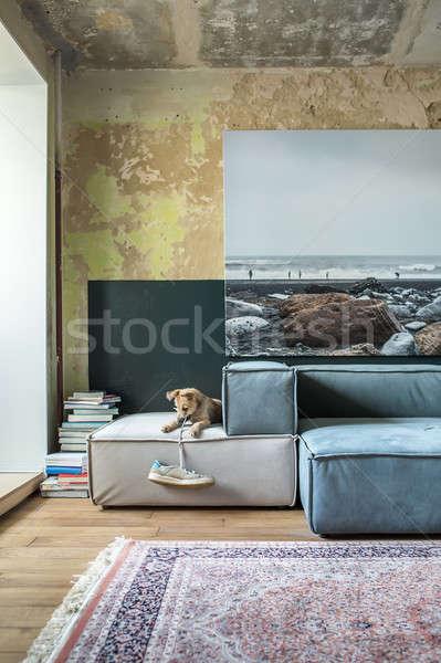 Interieur vliering stijl kamer haveloos muren Stockfoto © bezikus