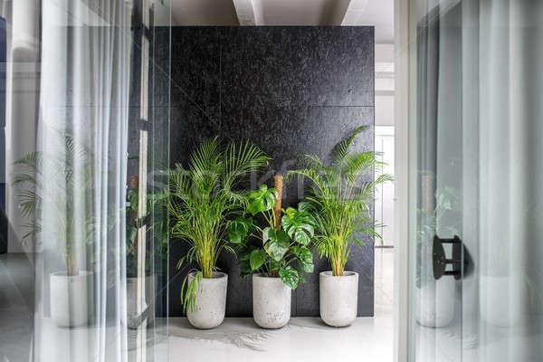 şık iç çatı katı stil lambalar ofis Stok fotoğraf © bezikus