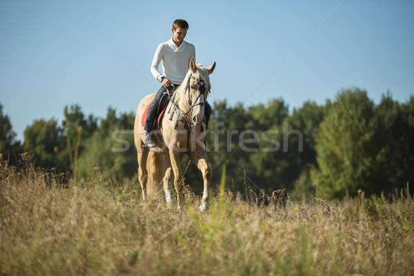 魅力的な 男 馬に乗って 見える 距離 ストックフォト © bezikus
