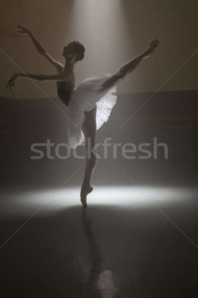Ballerina in the white tutu Stock photo © bezikus