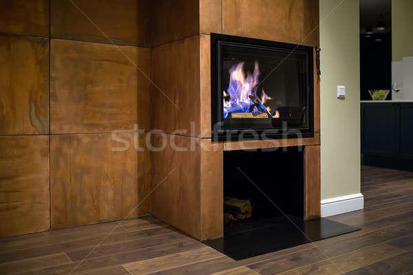 Kandalló égő tűzifa fekete üveg ajtó Stock fotó © bezikus