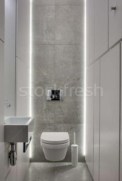 Lavatory in modern style Stock photo © bezikus