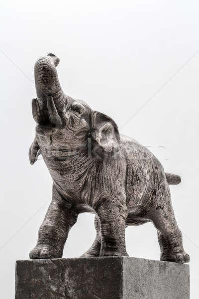 Stock fotó: Acél · elefánt · fehér · stúdió · arc · test