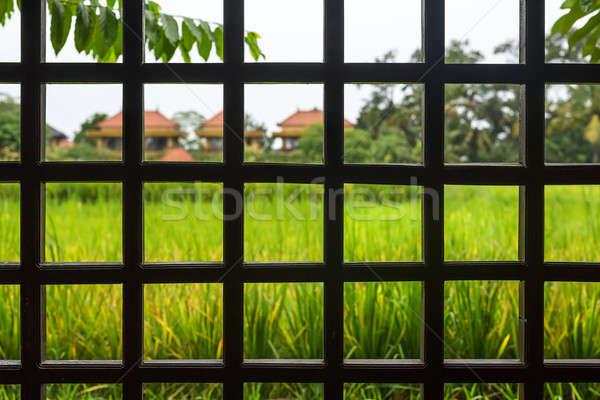 View through wooden lattice Stock photo © bezikus