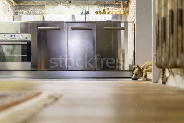 Puppy keuken vliering stijl mooie Stockfoto © bezikus