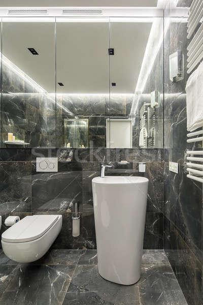 Luxury washroom in modern style Stock photo © bezikus