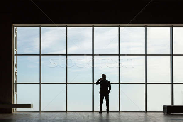 Stylish business man in the background of a large window  Stock photo © bezikus