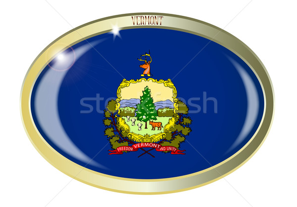 Vermont zászló ovális gomb fém izolált Stock fotó © Bigalbaloo