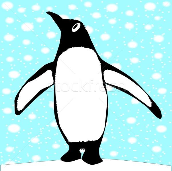 Inquisitive Penguin Stock photo © Bigalbaloo