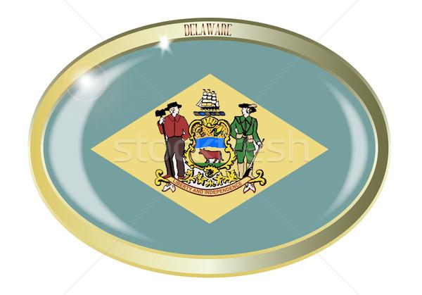 Delaware bayrak oval düğme Metal yalıtılmış Stok fotoğraf © Bigalbaloo
