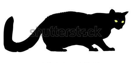 Cat Stock photo © Bigalbaloo