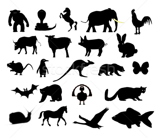 Animals Collection Silhouette Stock photo © Bigalbaloo