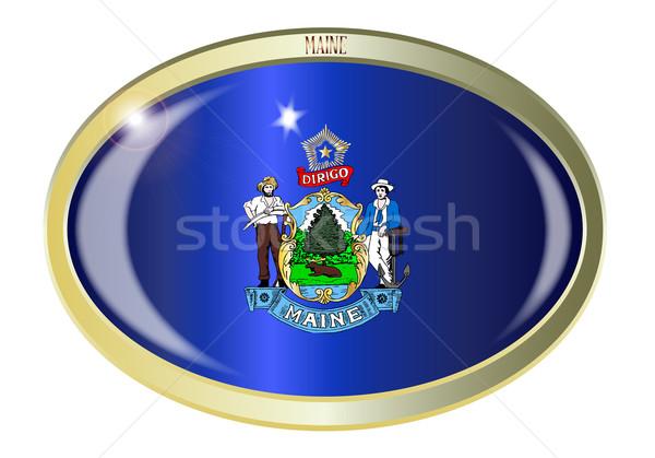 Maine bayrak oval düğme Metal yalıtılmış Stok fotoğraf © Bigalbaloo