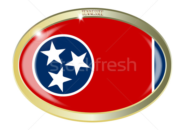 Tennessee sceau ovale bouton métal isolé Photo stock © Bigalbaloo