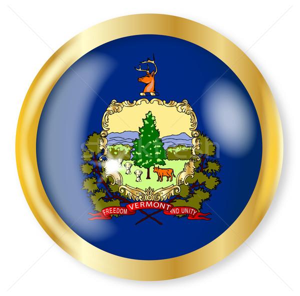 Vermont zászló gomb arany fém körkörös Stock fotó © Bigalbaloo