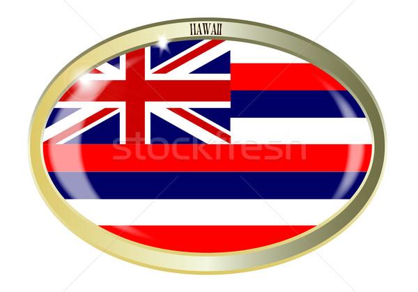 Hawaii bandiera ovale pulsante metal isolato Foto d'archivio © Bigalbaloo