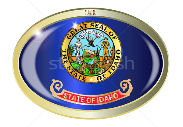 Stok fotoğraf: Idaho · bayrak · oval · düğme · Metal · yalıtılmış
