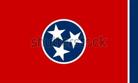 Bandera Tennesse dibujo sello EUA Foto stock © Bigalbaloo