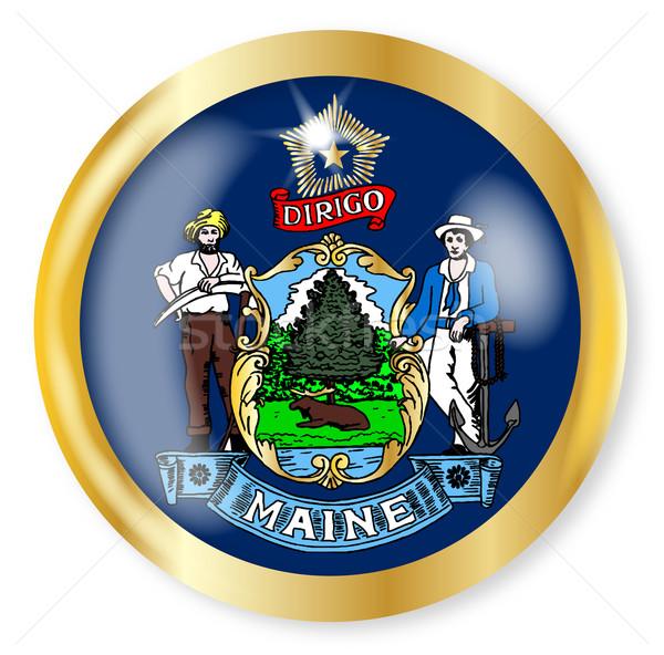 Maine vlag knop goud metaal Stockfoto © Bigalbaloo