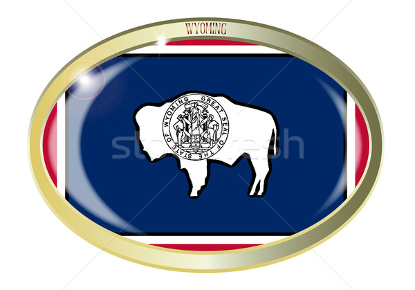 Wyoming State Flag Oval Button Stock photo © Bigalbaloo