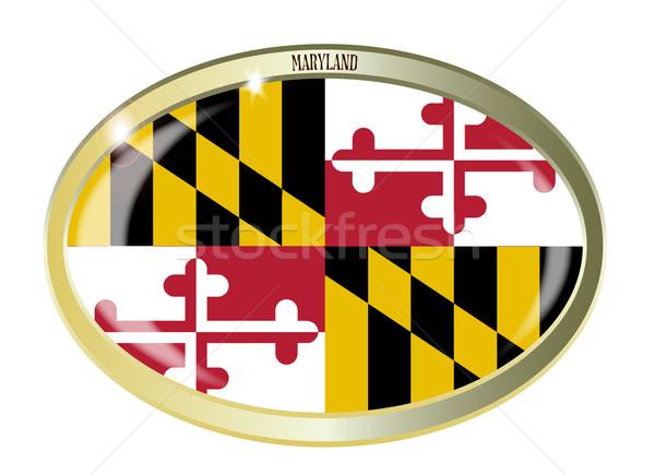 Maryland banderą owalny przycisk metal odizolowany Zdjęcia stock © Bigalbaloo