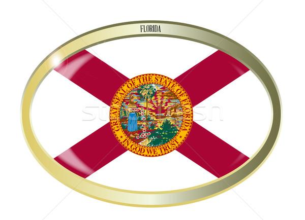 Stockfoto: Florida · vlag · ovaal · knop · metaal · geïsoleerd