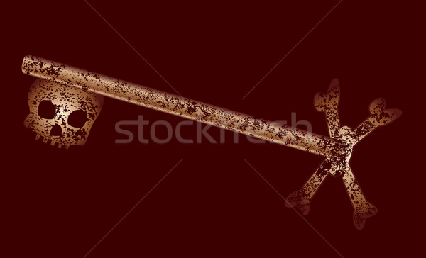 старые скелет ключевые латунь темно Сток-фото © Bigalbaloo