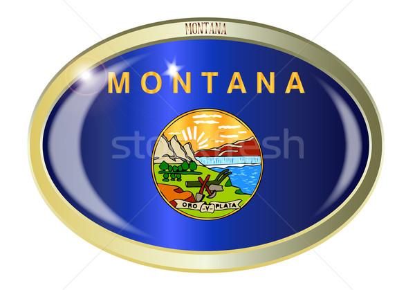 Montana zászló ovális gomb fém izolált Stock fotó © Bigalbaloo
