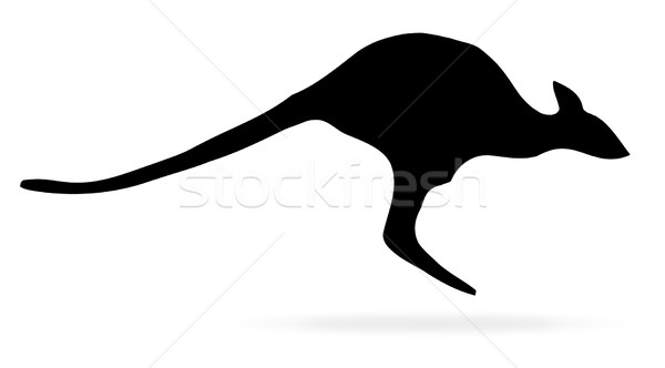 Kangaroo Stock photo © Bigalbaloo
