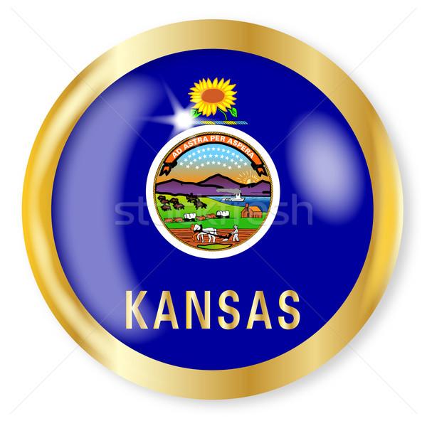 Kansas Flag Button Stock photo © Bigalbaloo