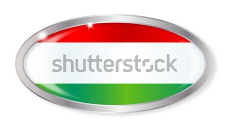 Венгрия флаг овальный кнопки серебро изолированный Сток-фото © Bigalbaloo