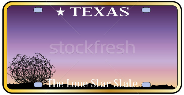 Texas License Plate Stock photo © Bigalbaloo